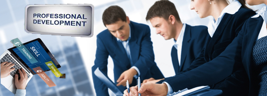 Business Professional training and development services